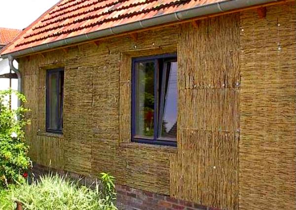 Камышитовые дома